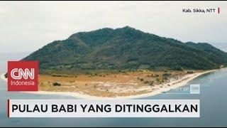 Video Pulau Babi yang Ditinggalkan MP3, 3GP, MP4, WEBM, AVI, FLV November 2018