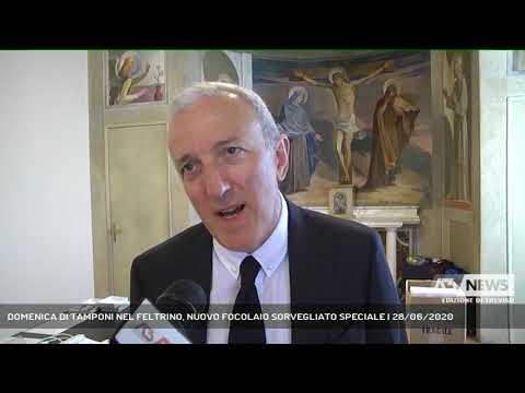 DOMENICA DI TAMPONI NEL FELTRINO, NUOVO FOCOLAIO SORVEGLIATO SPECIALE | 28/06/2020