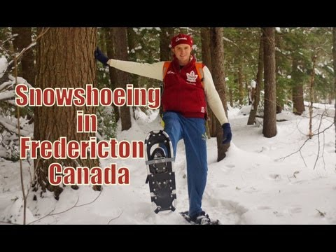 Winter Snowshoeing in Fredericton, Canada
