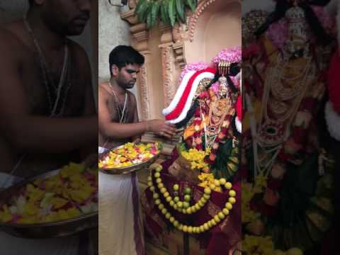 Video Thai Thiruvilakku Poojai, 9th Feb 17, Lagos, Nigeria download in MP3, 3GP, MP4, WEBM, AVI, FLV January 2017