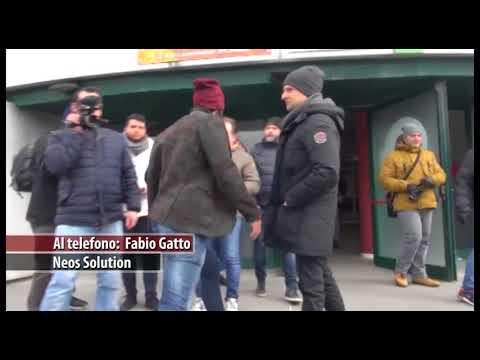 Gatto ad Arezzo Tv: ''Stiamo valutando le offerte''