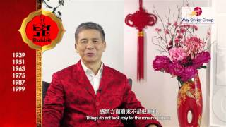 Nonton 2013 Chinese Zodiac Forecast For Rabbit By Grand Master Tan Khoon Yong  Feng Shui   Singapore  Film Subtitle Indonesia Streaming Movie Download