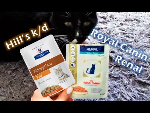 Wet Food Review for Cats with Kidney Disease - Taste Tests - Analytical Constituents - Feeding Tips
