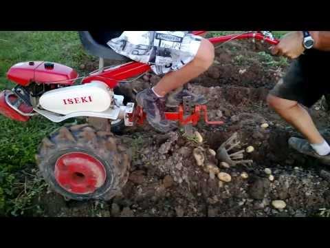 Arracheuse pommes de terre 2013 pour motoculteur - Potato harvester with tiller