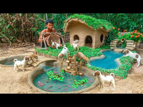 Rescue Abandoned Puppies Building Mud House Dog And Fish Pond For Red Fish