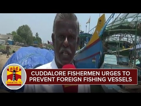 Cuddalore-Fishermen-urges-to-Prevent-Foreign-Fishing-Vessels--Thanthi-TV