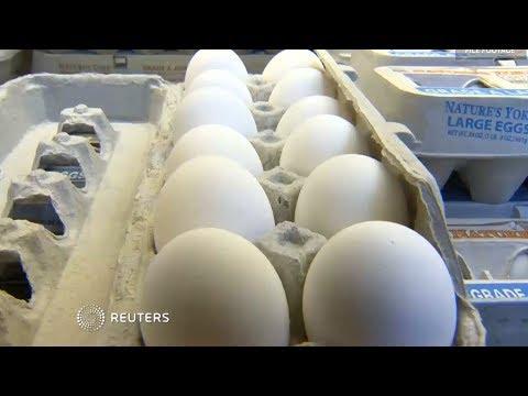 Over 200 million eggs recalled in salmonella scare