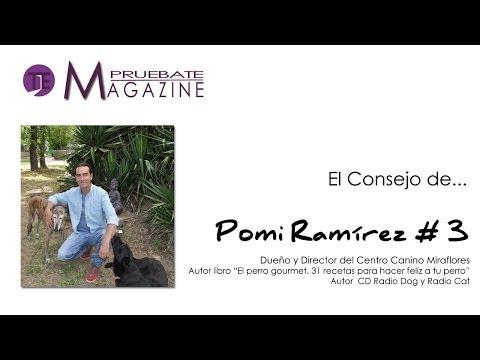 ADOPCIÓN VS COMPRA DE ANIMALES