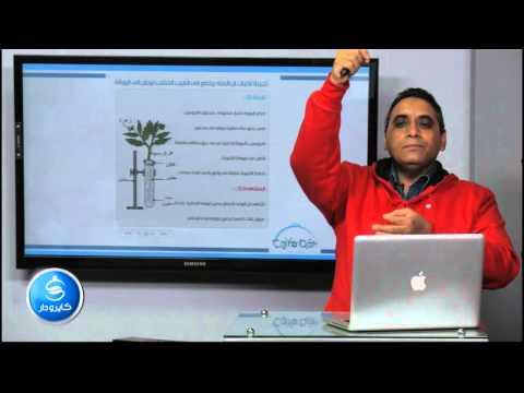 أحياء - الباب الخامس| تجربة لأثبات عملية النتح في النبات