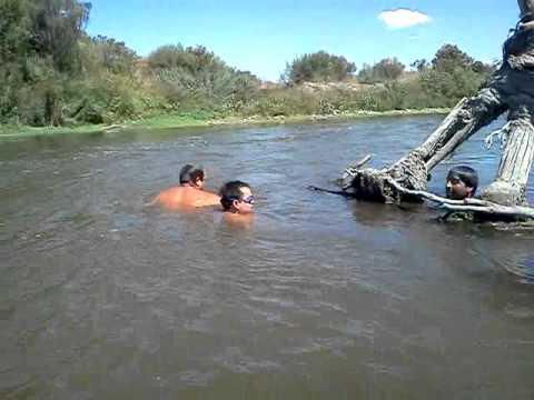 Pesca a mano de los Hermanos Silva de San Vicente de tagua tagua Chile  2