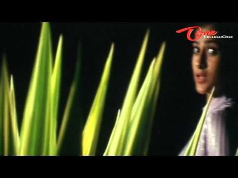 Cash  Nuvvu Nenani Verukadani  Melody Song