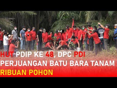 HUT PDIP Ke 48, DPC PDI Perjuangan Batu Bara Tanam Ribuan Pohon