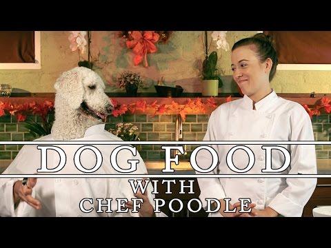 Thanksgiving Doggy Bag! – Dog Food