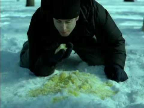 Yellow snow beer commercial