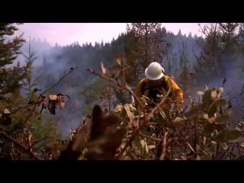 Find Your Path: Wildland Firefighter
