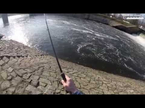 Rybáři bez hranic