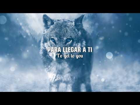 SELENA GOMEZ & MARSHMELLO - WOLVES |LETRA EN INGLÉS Y ESPAÑOL (видео)