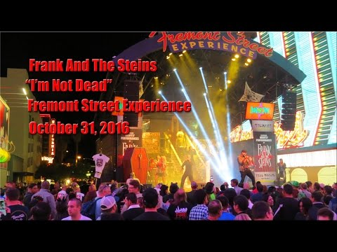 Frank And The Steins -