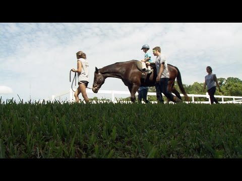 ONE Central Florida Short: Horseback Therapy