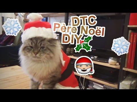[DTC 14] DIY costume de Père Noël pour ton chat - Crêpe au Citron
