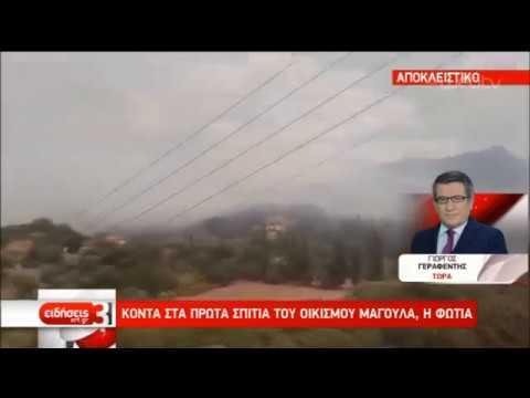 Σε εξέλιξη πυρκαγιά στη Φωκίδα- Ενισχύθηκαν οι δυνάμεις της Πυροσβεστικής | 01/09/2019 | ΕΡΤ