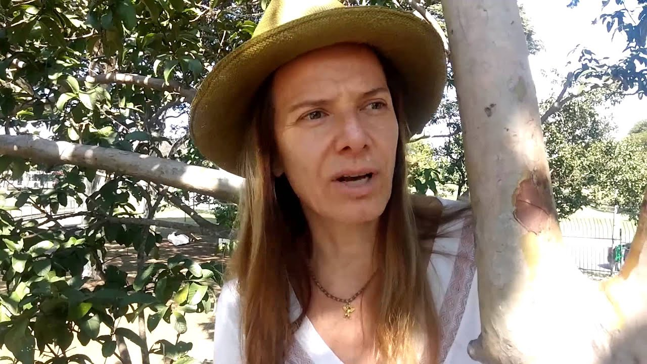 Projeto Horizontes | Ana Carla Fonseca - Economia Criativa e Turismo