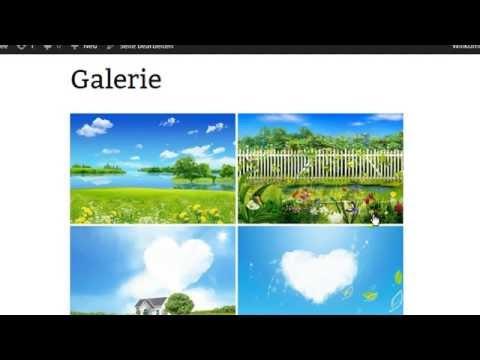 Mit WordPress eine Galerie erstellen und nutzen