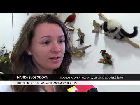 TVS: Hodonín - 16. 3. 2018