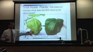 Dr. Kay's Microbiology Chapter 13 Lecture Part 1-A