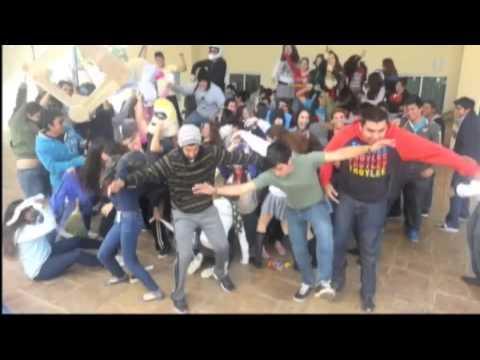 Harlem Shake IMC