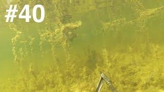Начикал всего подряд из накопившегося. Смотреть особо нечего, но тупо удалить было жалко ))Сейчас почти месяц шпарят дожди и везде адский мутняк.... ждёмс.Подводная охота, Spearfishing, Zemūdens Medības, Varustuse