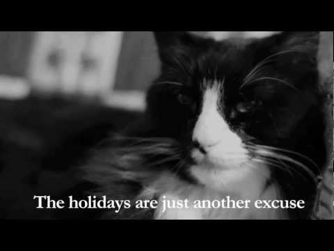 Henri The French Cat Youtube