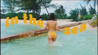 Video 🌊 Little Woman & the Sea · CatCreature MP3, 3GP, MP4, WEBM, AVI, FLV Maret 2019