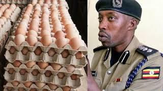 Uganda news | How fake eggs were discovered in Kampala