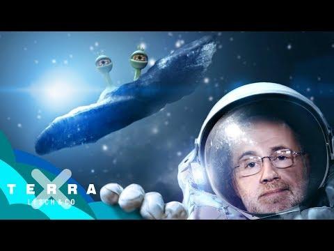 Das Alien-Raumschiff Oumuamua?