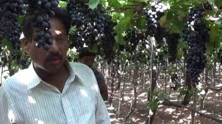Indapur Sunil shinde Bullet