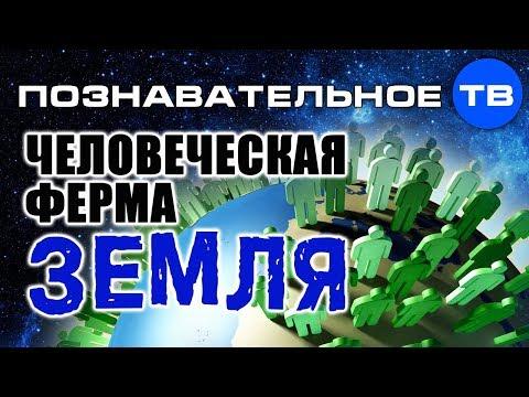 Человеческая ферма Земля (Познавательное ТВ Артём Войтенков) - DomaVideo.Ru
