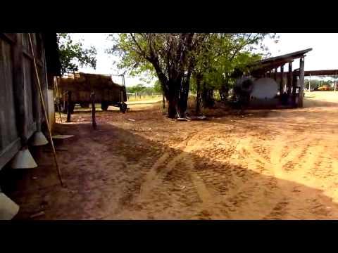 Fazenda em Buritizeiro MG 9 784 ha movie