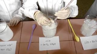 Doświadczenie z ekstraktem czerownej kapusty i suchym lodem