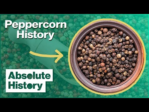 Origins of Pepper & Cinnamon | The Spice Trail | Absolute History