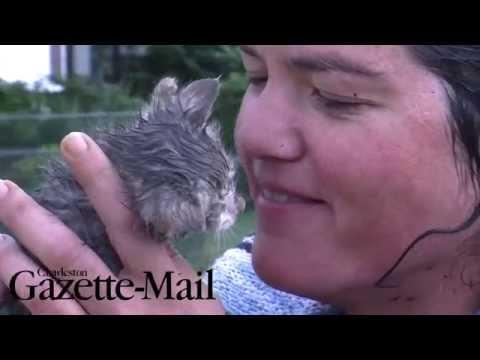 No Se Imaginaran Nunca Que Cosa Ha Llegado A Hacer Esta Mujer Para Salvar Un Gatito...Wow!