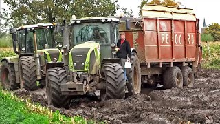 Video Harvesting mais in the mud | Claas Jaguar | Axion | Xerion | New Holland T7070 | NL. MP3, 3GP, MP4, WEBM, AVI, FLV Juni 2017