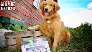 Nonton Go Behind the Scenes of A Dog's Purpose (2017) Film Subtitle Indonesia Streaming Movie Download