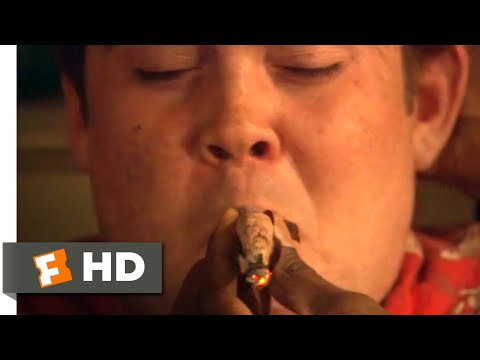 How High (2001) - I Can't Smoke a Finger Scene (9/10)   Movieclips