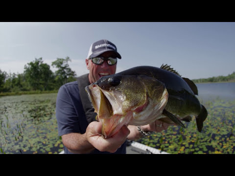 Frog Fishing Giant Largemouth & Eating Weeds – Dave Mercer's Facts of Fishing THE SHOW