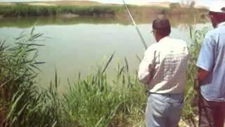 kırşehir kızılırmak balık avı
