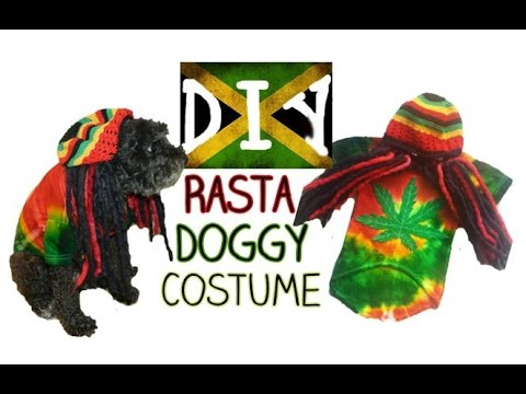 DIY| Rasta Doggy Costume (No Sew)
