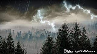 Rain and thunder sounds in the forest create a relaxing mood. This nature white noise will help you de-stress after a long day. Feel that connection to nature that you've been missing. Listening to this rain sound can help you sleep better, focus with greater ease and feel calmer. Please subscribe to our channel: https://www.youtube.com/user/RelaxingWhiteNoisePlease check out our website to buy MP3s of your favorite sounds: https://relaxingwhitenoise.com/Follow us on Facebook: http://bit.ly/2a3k3HBYOUTUBE'S BEST RAIN SOUNDS:Relaxing White Noise is one of the leading providers of rain sounds on YouTube. Rain is one of nature's most relaxing ambiences, and we have a vast selection of sounds to choose from including more than a dozen rain and thunder sounds.Here are some of our most popular rain videos:Epic Thunder & Rain: https://www.youtube.com/watch?v=nDq6TstdEi8Rain in Woods: https://www.youtube.com/watch?v=IdGUunu7pVIRain on a Tin Roof: https://www.youtube.com/watch?v=wJ9RgW8MrKAForest Rain & Thunderstorm: https://www.youtube.com/watch?v=tP0zE1zXTVAEnjoy better relaxation, sleep or focus today!DISCLAIMER:Remember that loud sounds can damage your hearing. When playing one of our videos, if you cannot have a conversation over the sound without raising your voice, the sound may be too loud for your ears. Please do not place speakers right next to a baby's ears. If you have difficulty hearing or hear ringing in your ears, please immediately discontinue listening to the white noise sounds and consult an audiologist or your physician. The sounds provided by this Youtube channel are for entertainment purposes only and are not a treatment for sleep disorders or tinnitus. If you have significant difficulty sleeping on a regular basis, experience fitful/restless sleep, or feel tired during the day, please consult your physician.© Relaxing White Noise LLC, 2017. All rights reserved. Any reproduction or republication of all or part of this video/audio is prohibited.Be Awesome!