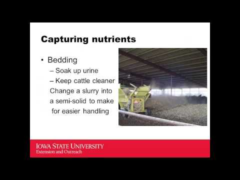 Manure and nutrient production, bedding, design tips for beef barns
