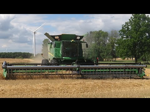Wheat harvest arrives in Ontario